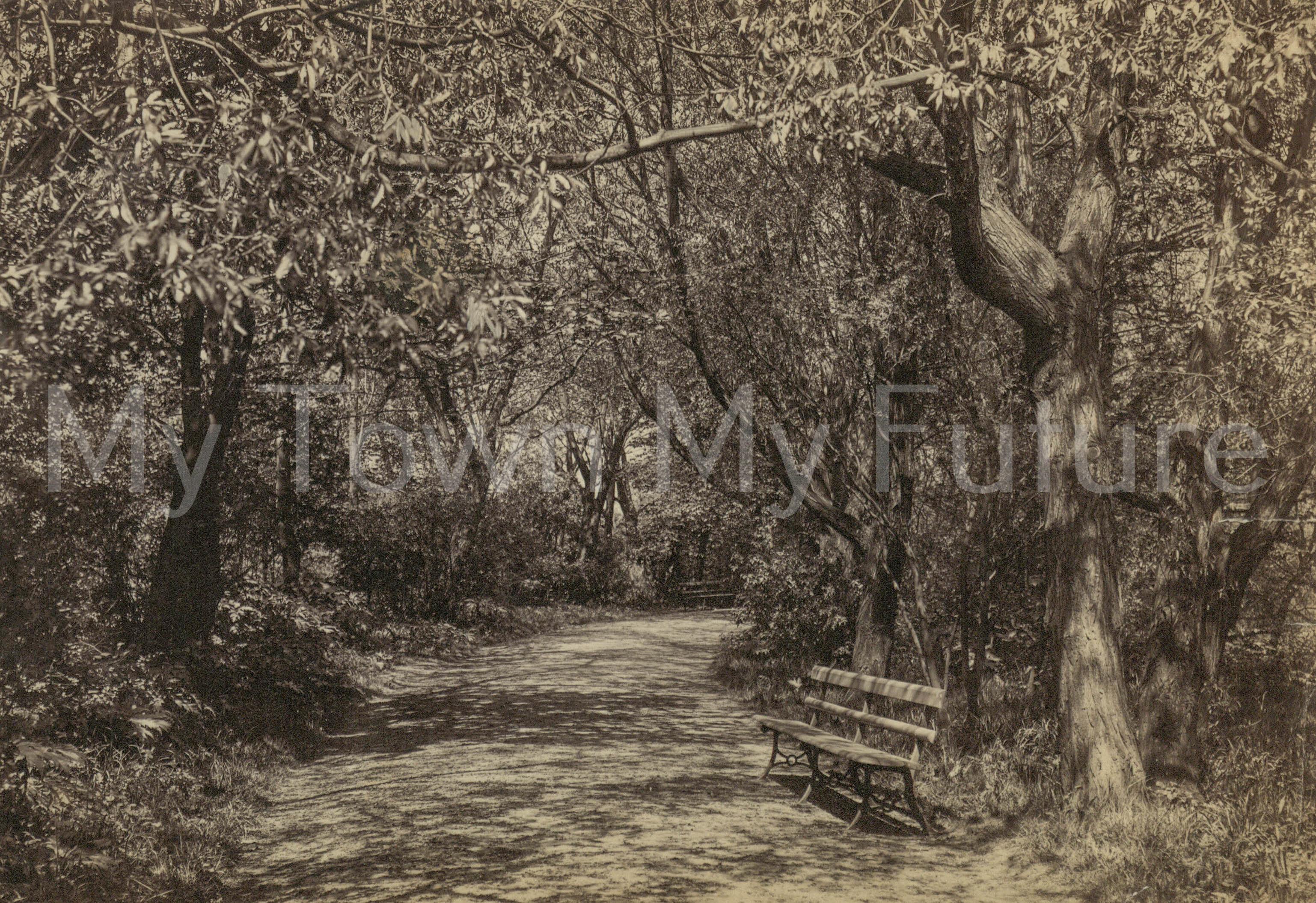 Albert Park - Titled a Walk in Albert Park