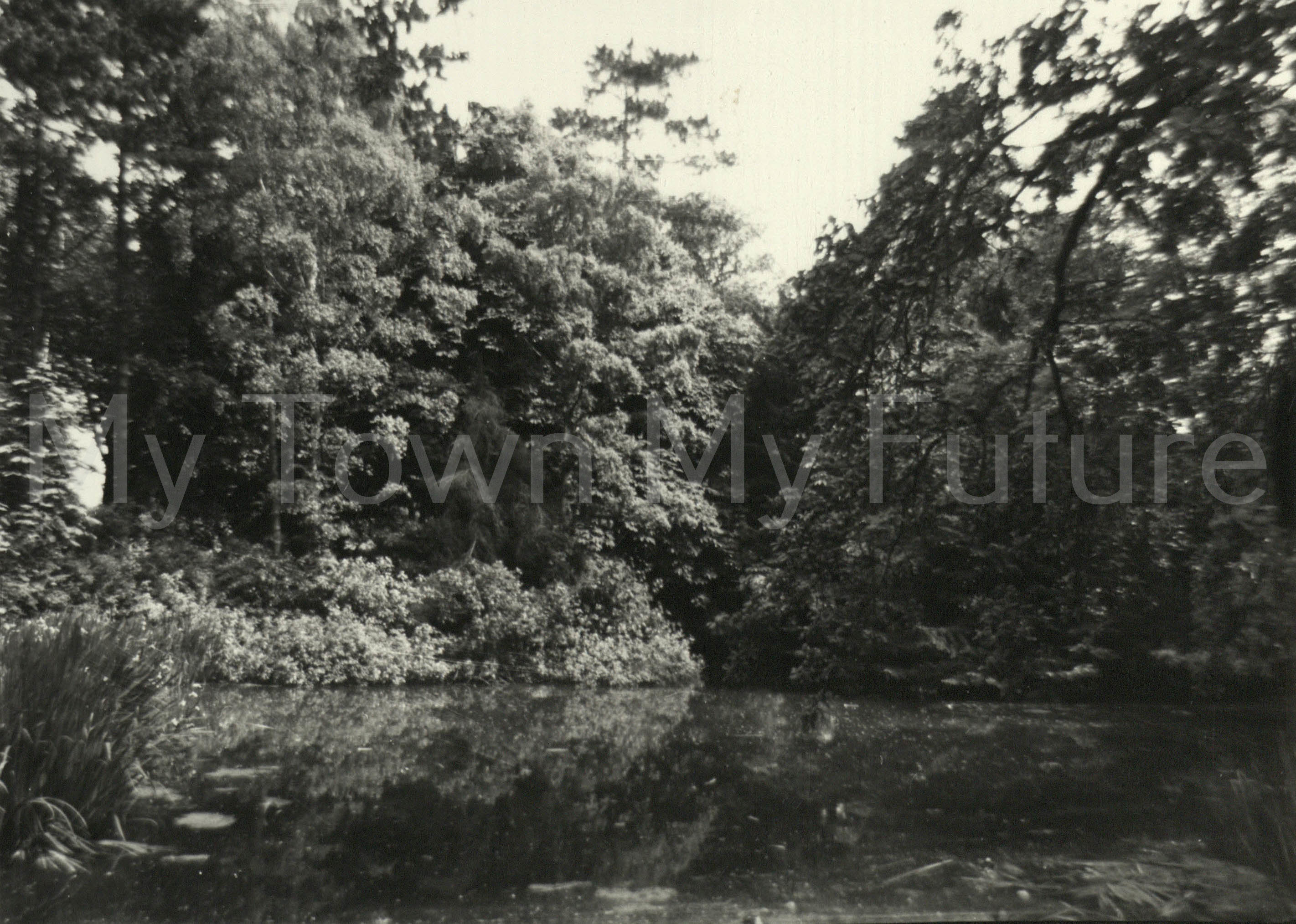 Stewart Park - the day Marton Hall Burned Down, Saturday June 4th 1960