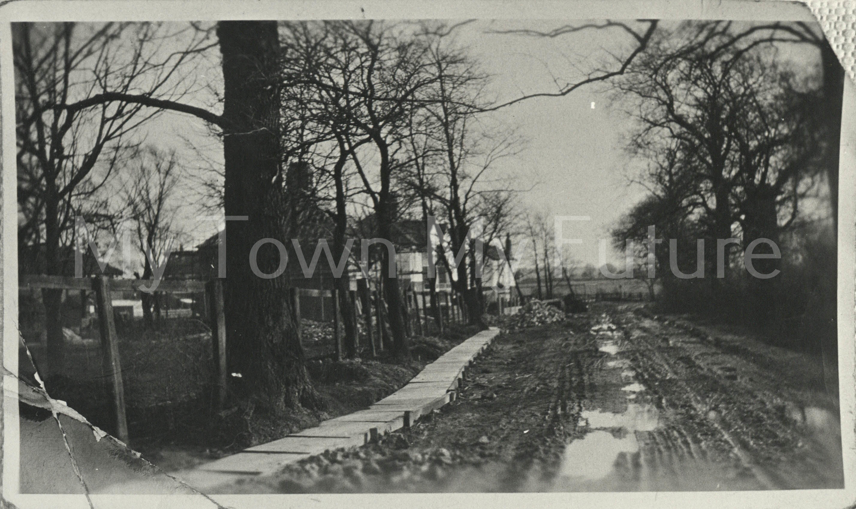 Thackeray Grove, Middlesbrough (1928)