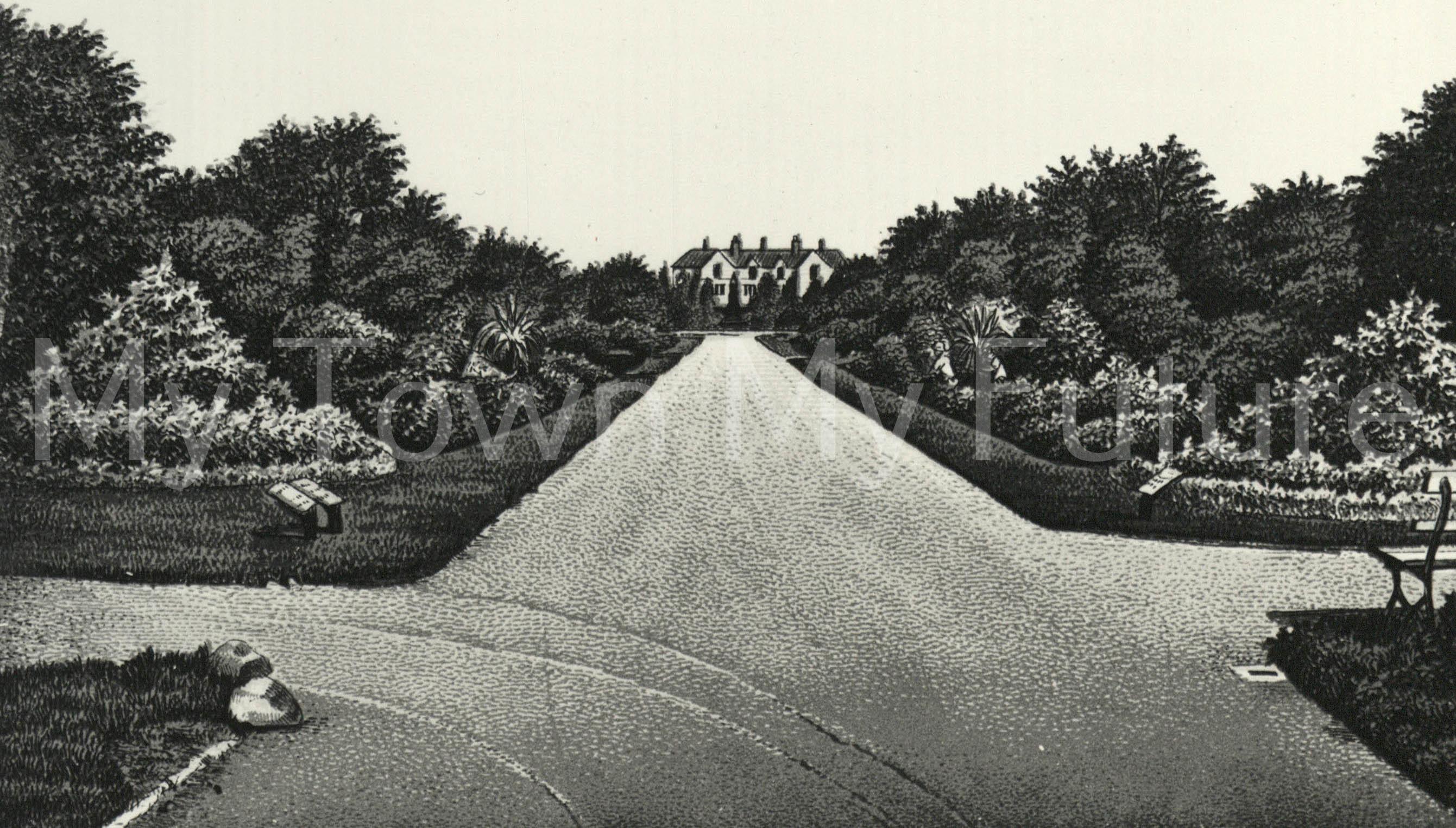 Albert Park - View looking North, c1900