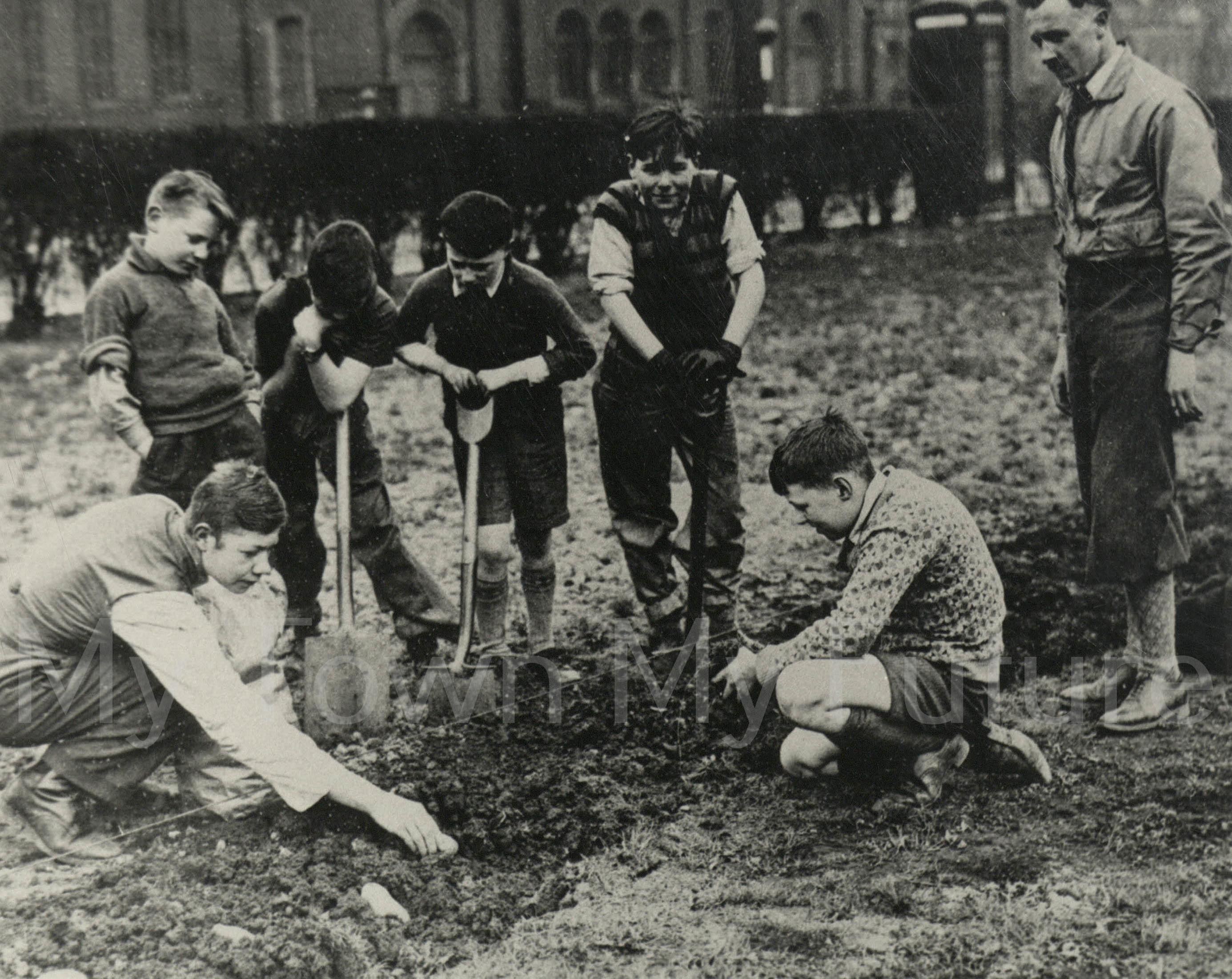 World War II,Archibald School,Teacher 'Stinker' Sterling ,Potato Planting,'Digging for Victory',Albert Park