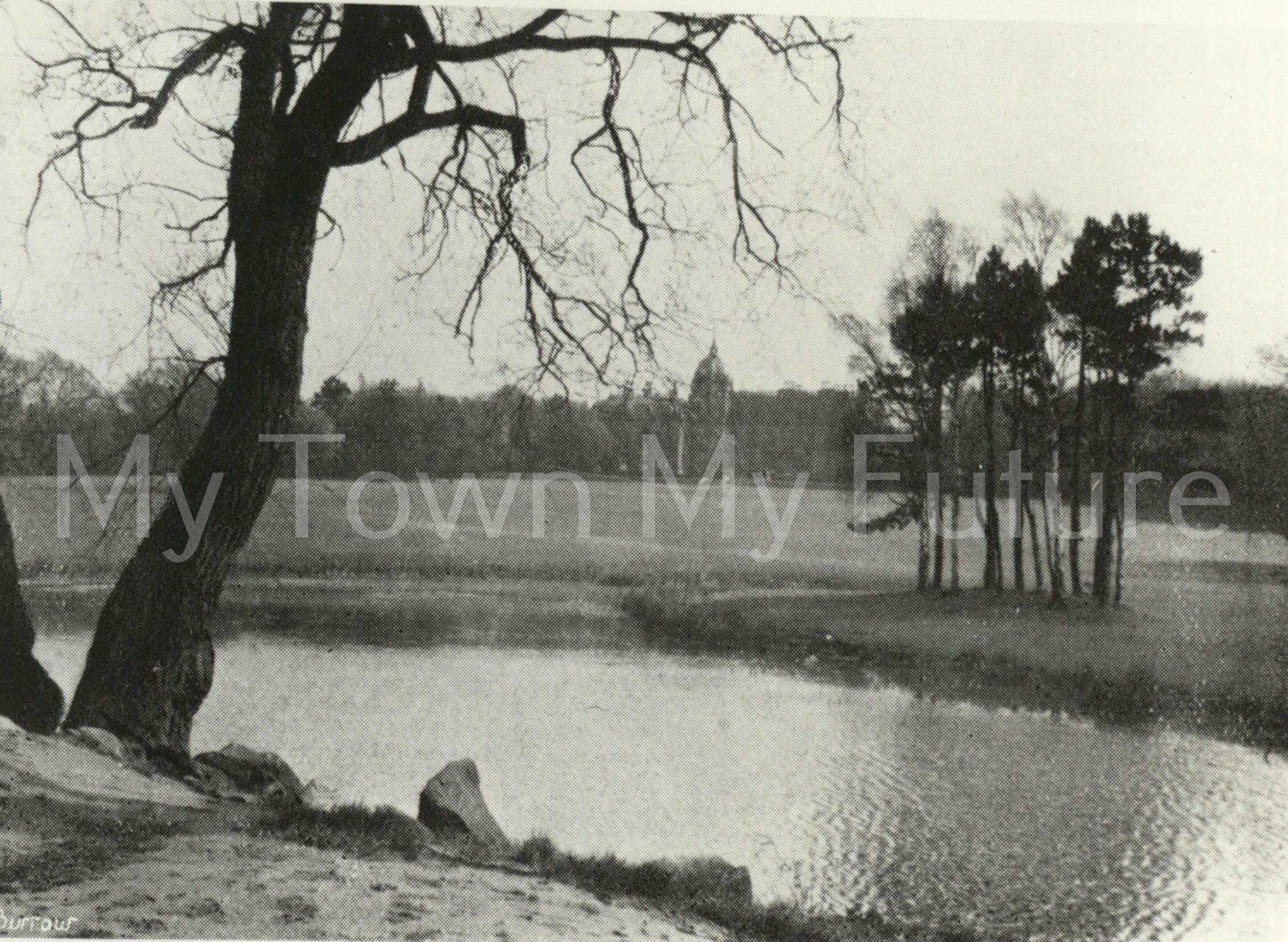 Marton Hall, Stewart Park. (1942)