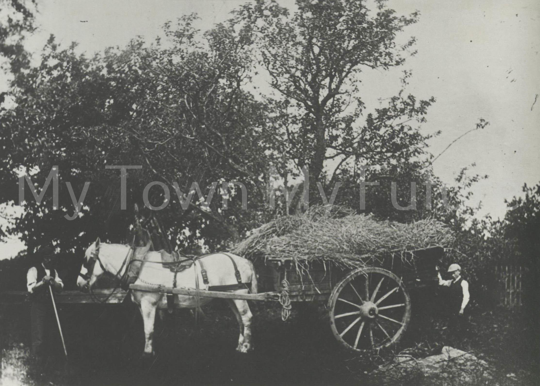 Angrove Farm,Great Ayton,1880